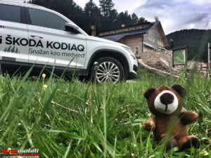 Video: Škoda Kodiaq Off Road drive 2017.